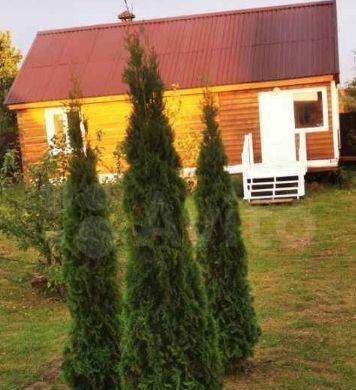 Продажа дома СНТ Горетовка, Школьная улица, цена 555000 рублей, 2021 год объявление №533211 на megabaz.ru