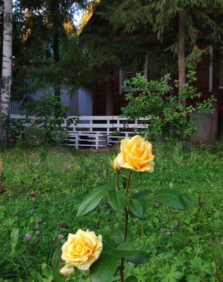 Аренда дома деревня Сивково, цена 75000 рублей, 2021 год объявление №1464592 на megabaz.ru