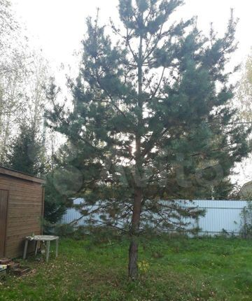 Продажа дома деревня Верейка, цена 720000 рублей, 2021 год объявление №526964 на megabaz.ru