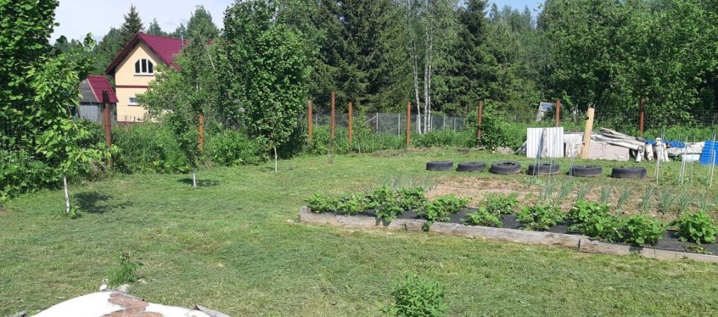 Продажа дома садовое товарищество Родник, цена 370000 рублей, 2021 год объявление №484764 на megabaz.ru