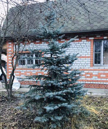 Продажа дома садовое товарищество Радуга, цена 4300000 рублей, 2021 год объявление №549690 на megabaz.ru