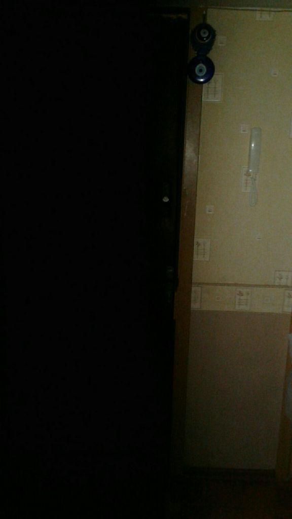Продажа однокомнатной квартиры Пущино, улица Профессора Виткевича 11А/9, цена 1500000 рублей, 2021 год объявление №459861 на megabaz.ru