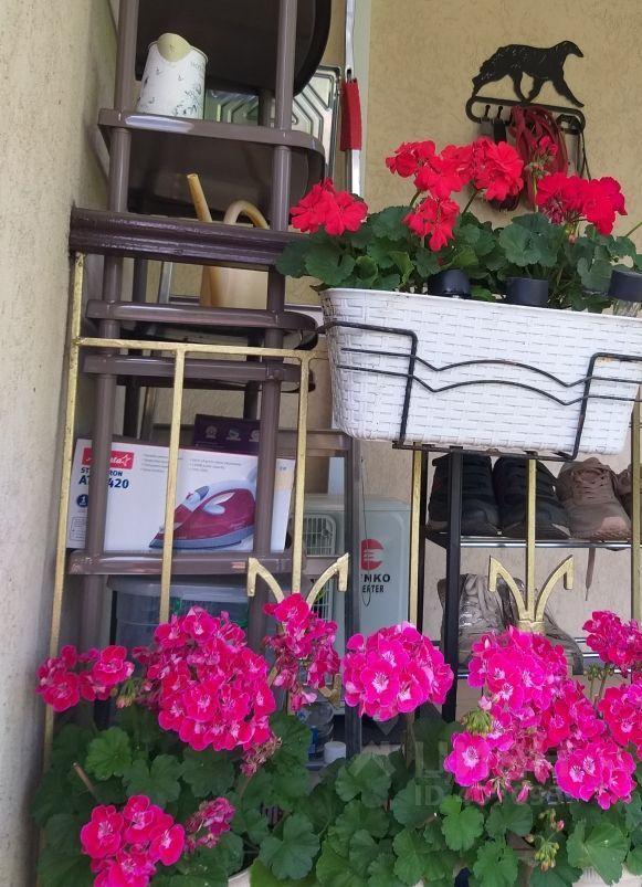 Продажа трёхкомнатной квартиры поселок Лесные Поляны, метро Медведково, цена 10500000 рублей, 2021 год объявление №627924 на megabaz.ru