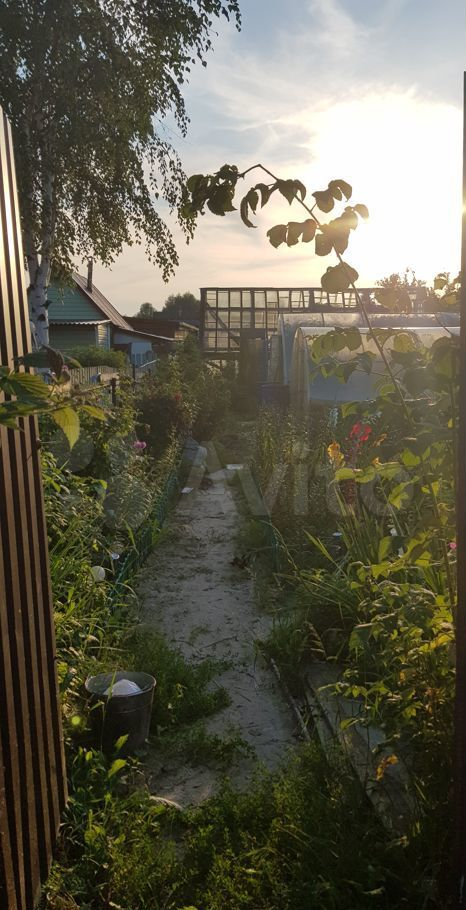 Продажа дома садовое товарищество Дружба, цена 720000 рублей, 2021 год объявление №686414 на megabaz.ru