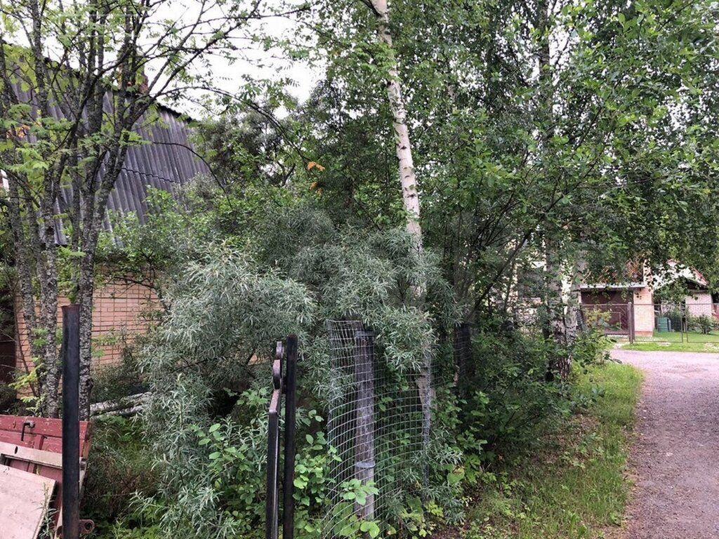 Продажа дома деревня Покровка, 1-я линия, цена 1300000 рублей, 2021 год объявление №584205 на megabaz.ru