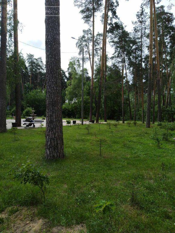 Продажа однокомнатной квартиры Раменское, Высоковольтная улица 21, цена 5500000 рублей, 2021 год объявление №637967 на megabaz.ru
