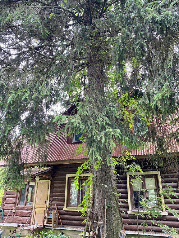 Продажа дома дачный посёлок Кратово, Большая Московская улица 2, цена 15000000 рублей, 2021 год объявление №636590 на megabaz.ru