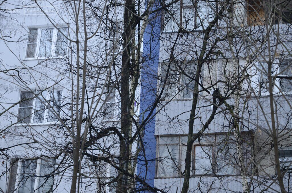 Продажа двухкомнатной квартиры Москва, метро Сходненская, бульвар Яна Райниса 24к1, цена 10700000 рублей, 2021 год объявление №592625 на megabaz.ru