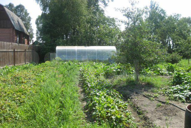 Продажа дома деревня Васютино, цена 1200000 рублей, 2021 год объявление №431662 на megabaz.ru
