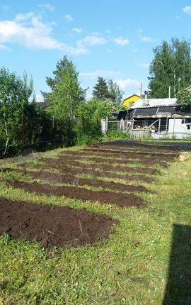Продажа дома садовое товарищество Союз, 12-я Южная улица, цена 285000 рублей, 2021 год объявление №552699 на megabaz.ru