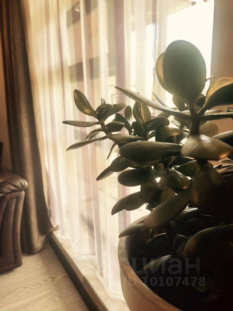 Аренда двухкомнатной квартиры Москва, метро Спартак, Лётная улица 99с3, цена 60000 рублей, 2021 год объявление №1412256 на megabaz.ru
