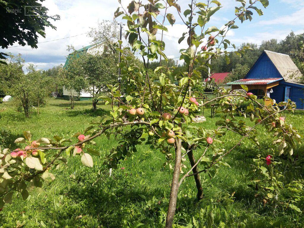 Продажа дома деревня Новосёлки, цена 3290000 рублей, 2021 год объявление №592310 на megabaz.ru