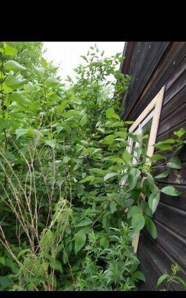 Продажа дома садовое товарищество Надежда, цена 350000 рублей, 2021 год объявление №564958 на megabaz.ru