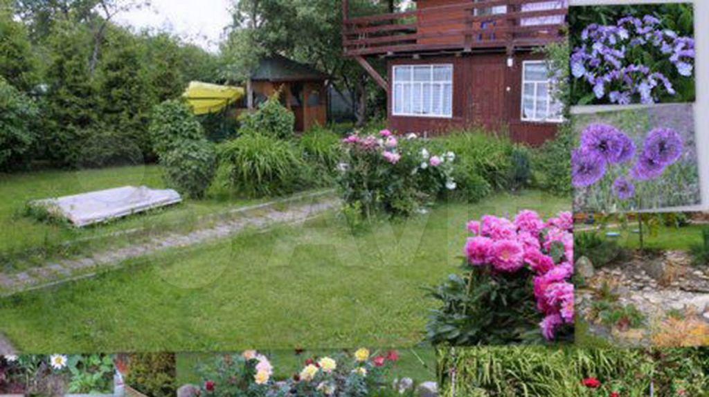 Аренда дома деревня Софьино, цена 70000 рублей, 2021 год объявление №1359985 на megabaz.ru