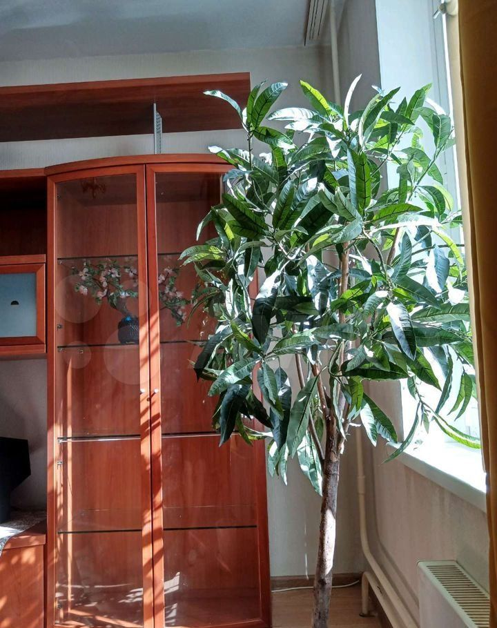 Аренда двухкомнатной квартиры Балашиха, цена 24000 рублей, 2021 год объявление №1364385 на megabaz.ru