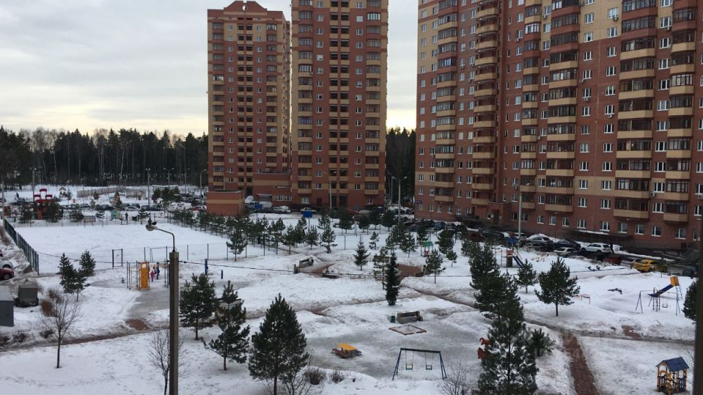 Продажа двухкомнатной квартиры деревня Щемилово, метро Новогиреево, улица Орлова 2, цена 5500000 рублей, 2021 год объявление №653290 на megabaz.ru