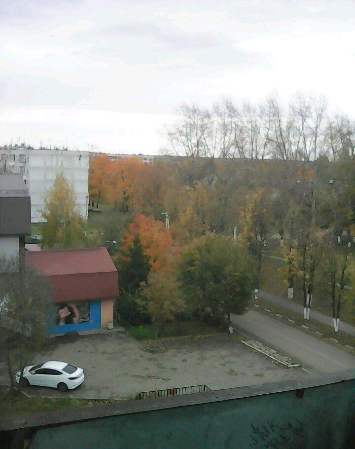 Аренда однокомнатной квартиры село Константиново, цена 16000 рублей, 2020 год объявление №1028837 на megabaz.ru