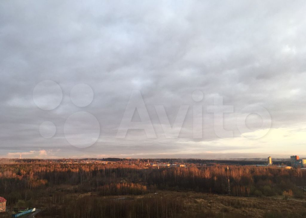 Продажа однокомнатной квартиры Солнечногорск, Молодёжный проезд 3, цена 4600000 рублей, 2021 год объявление №617322 на megabaz.ru