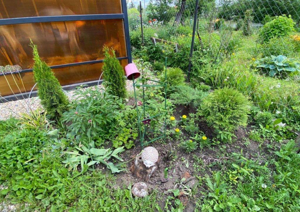 Продажа дома деревня Кузяево, цена 2850000 рублей, 2021 год объявление №636758 на megabaz.ru