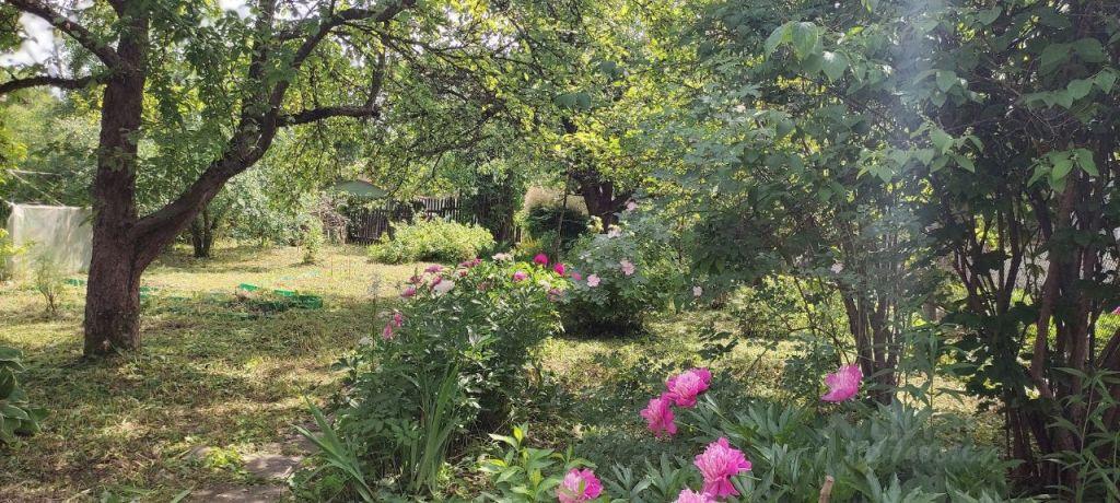 Продажа дома садовое товарищество Калининец, метро Кунцевская, цена 850000 рублей, 2021 год объявление №637381 на megabaz.ru