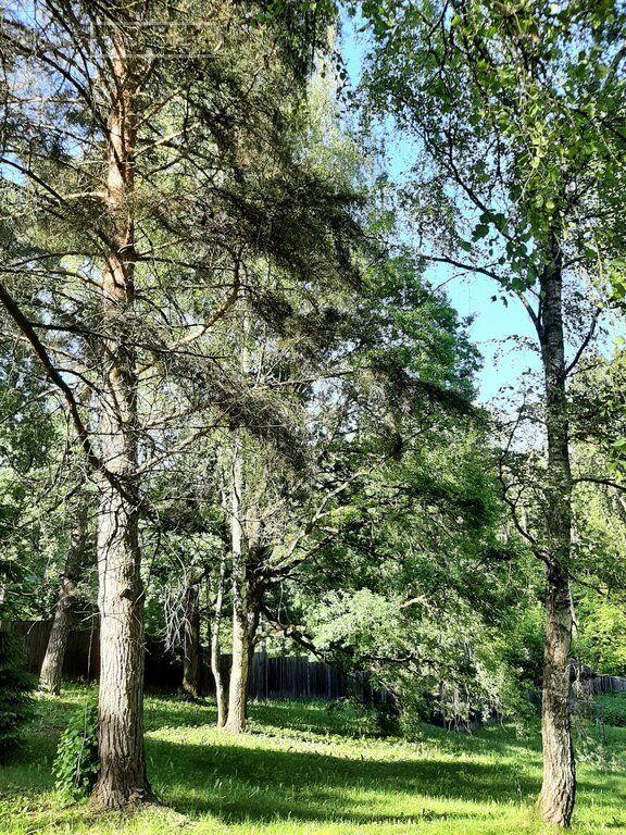 Продажа дома село Рождествено, Зелёная улица 11, цена 40000000 рублей, 2021 год объявление №639882 на megabaz.ru