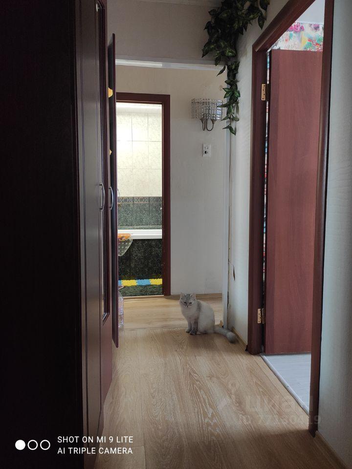 Продажа двухкомнатной квартиры поселок Любучаны, Заводская улица 5, цена 4500000 рублей, 2021 год объявление №663383 на megabaz.ru
