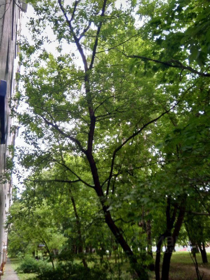 Продажа однокомнатной квартиры Москва, метро Пионерская, Молдавская улица 6, цена 9550000 рублей, 2021 год объявление №630937 на megabaz.ru