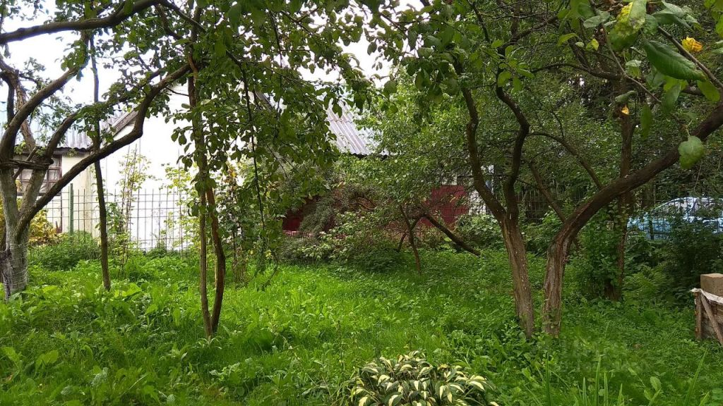 Продажа дома деревня Аббакумово, цена 4500000 рублей, 2021 год объявление №631211 на megabaz.ru