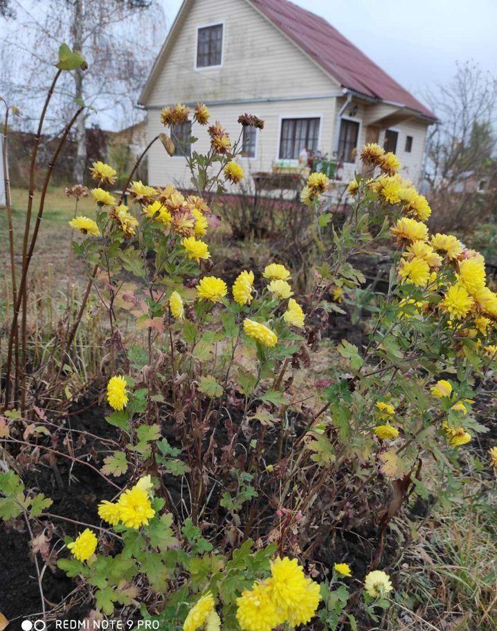 Продажа дома садовое товарищество Ивушка, цена 1380000 рублей, 2021 год объявление №601383 на megabaz.ru