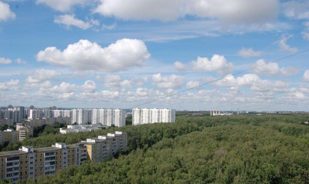 Продажа двухкомнатной квартиры Москва, метро Ясенево, Литовский бульвар 18, цена 10600000 рублей, 2020 год объявление №383352 на megabaz.ru