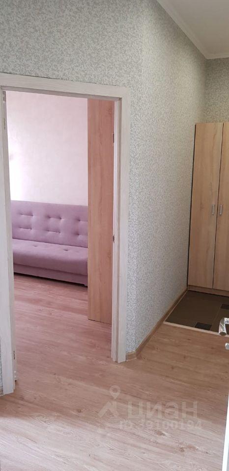 Аренда однокомнатной квартиры село Софьино, Новая улица 4, цена 20000 рублей, 2021 год объявление №1372671 на megabaz.ru
