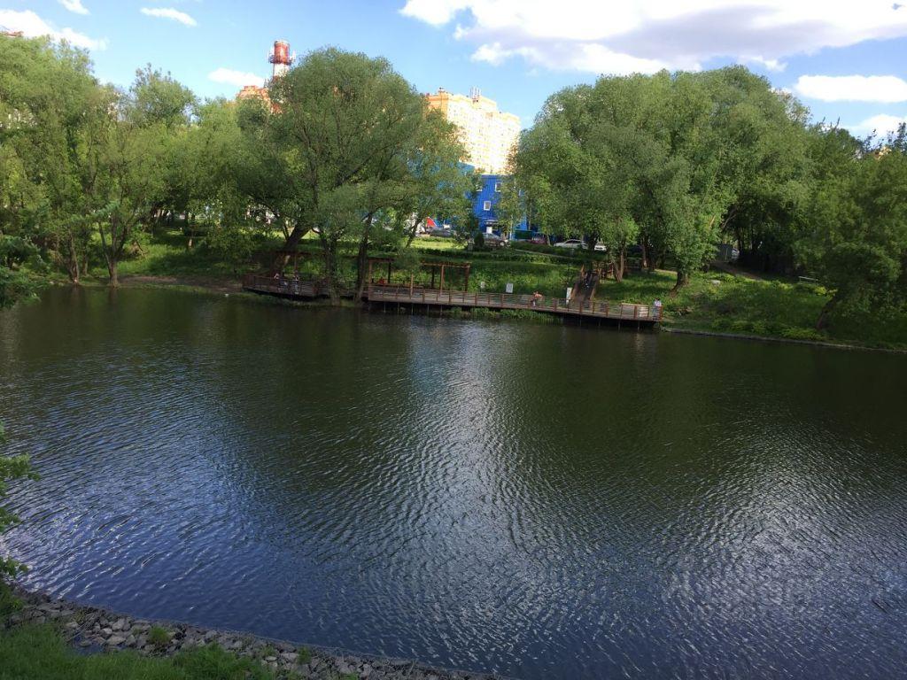 Продажа однокомнатной квартиры деревня Новая Москва, цена 6000000 рублей, 2021 год объявление №638425 на megabaz.ru