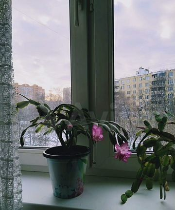 Аренда двухкомнатной квартиры Москва, метро Беляево, улица Введенского 12к1, цена 40000 рублей, 2021 год объявление №1336744 на megabaz.ru