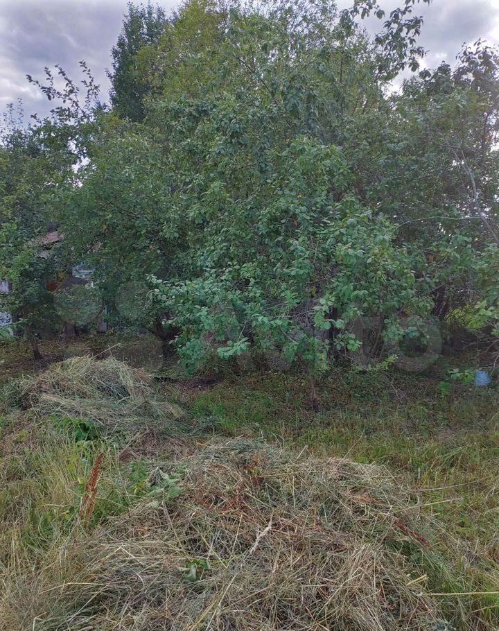 Продажа дома садовое товарищество Березка, цена 850000 рублей, 2021 год объявление №666700 на megabaz.ru