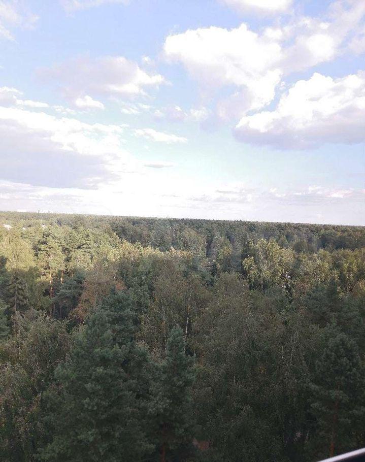 Продажа однокомнатной квартиры поселок Зеленый, Школьная улица 11, цена 5000000 рублей, 2021 год объявление №642944 на megabaz.ru
