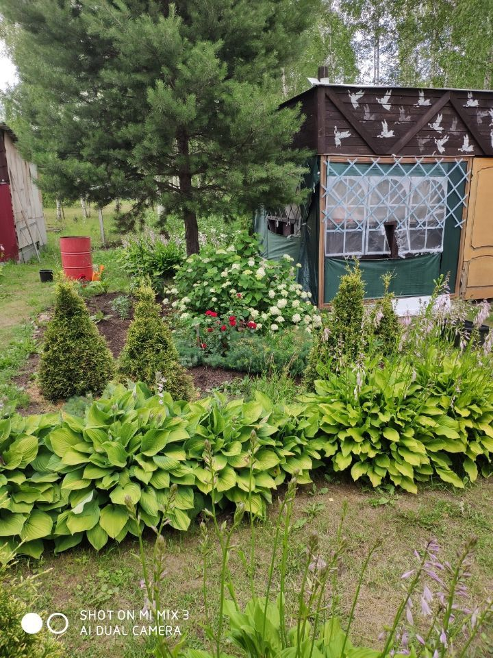 Продажа дома садовое товарищество Ивушка, цена 2500000 рублей, 2021 год объявление №648244 на megabaz.ru