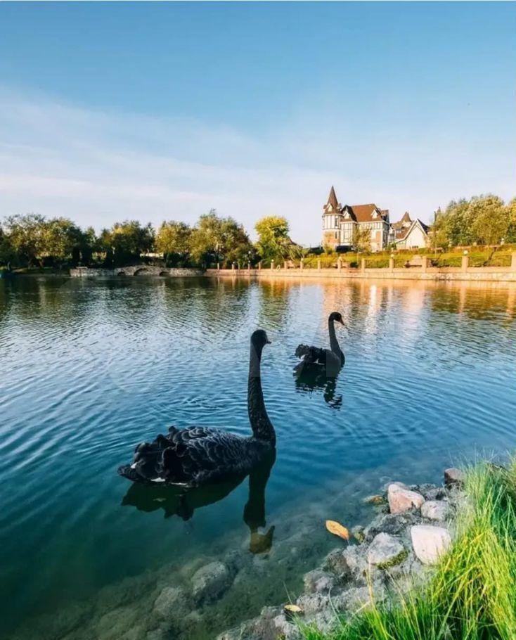 Продажа дома коттеджный поселок Княжье озеро, цена 90000000 рублей, 2021 год объявление №658999 на megabaz.ru