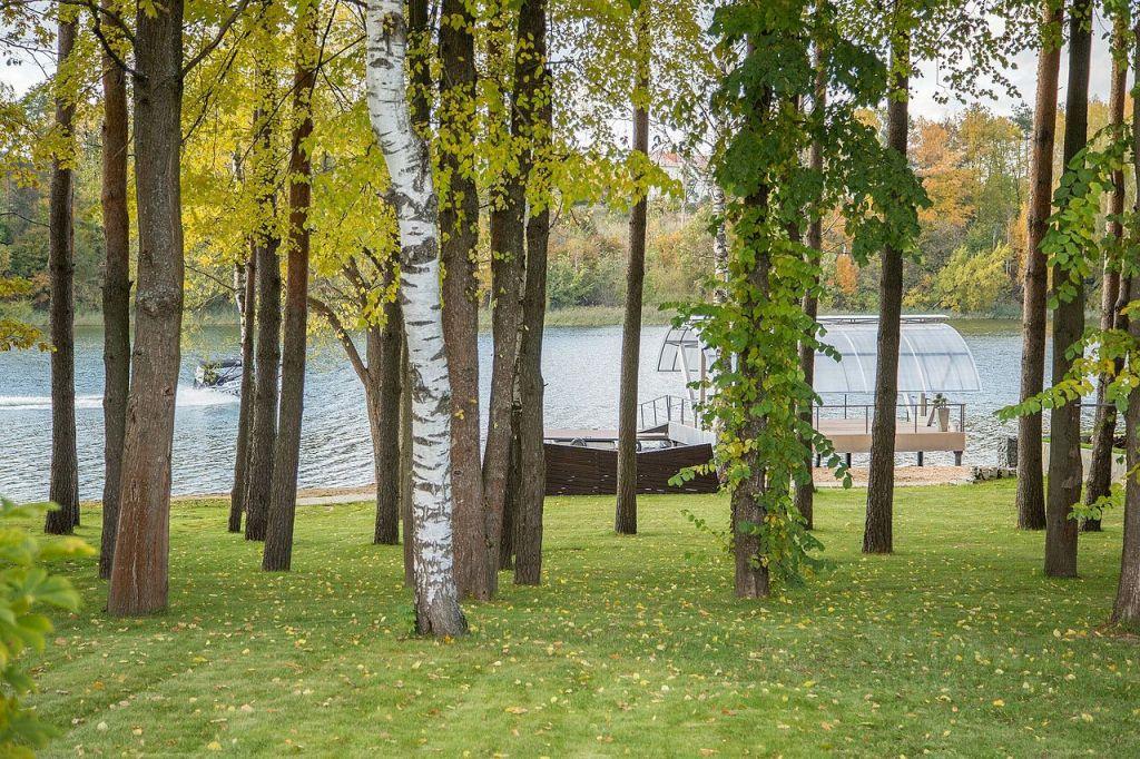 Продажа дома деревня Бережки, цена 130000000 рублей, 2021 год объявление №656269 на megabaz.ru