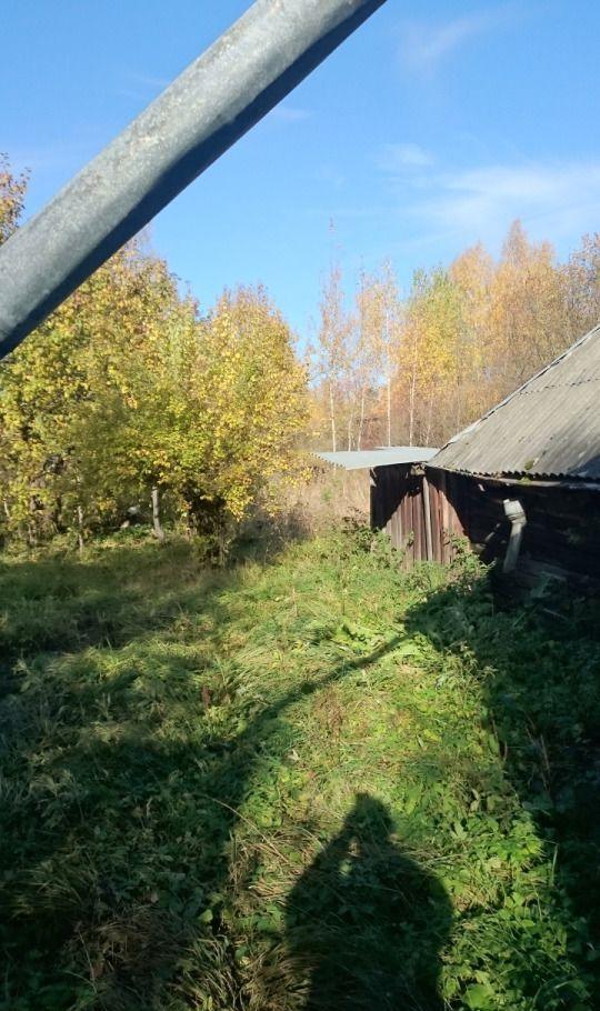 Продажа дома деревня Высоково, цена 2000000 рублей, 2020 год объявление №465389 на megabaz.ru