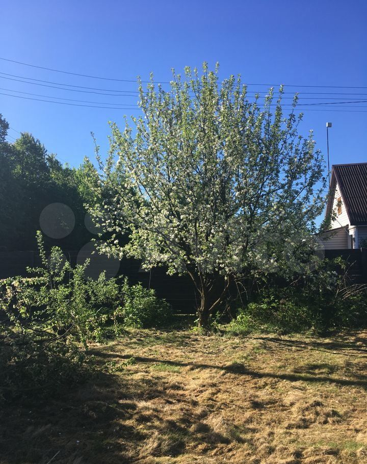 Продажа дома деревня Повадино, цена 1500000 рублей, 2021 год объявление №626012 на megabaz.ru