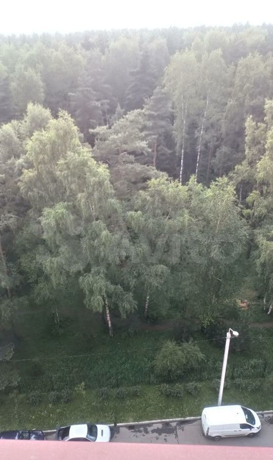 Аренда студии деревня Щемилово, улица Орлова 6, цена 15000 рублей, 2021 год объявление №1461305 на megabaz.ru