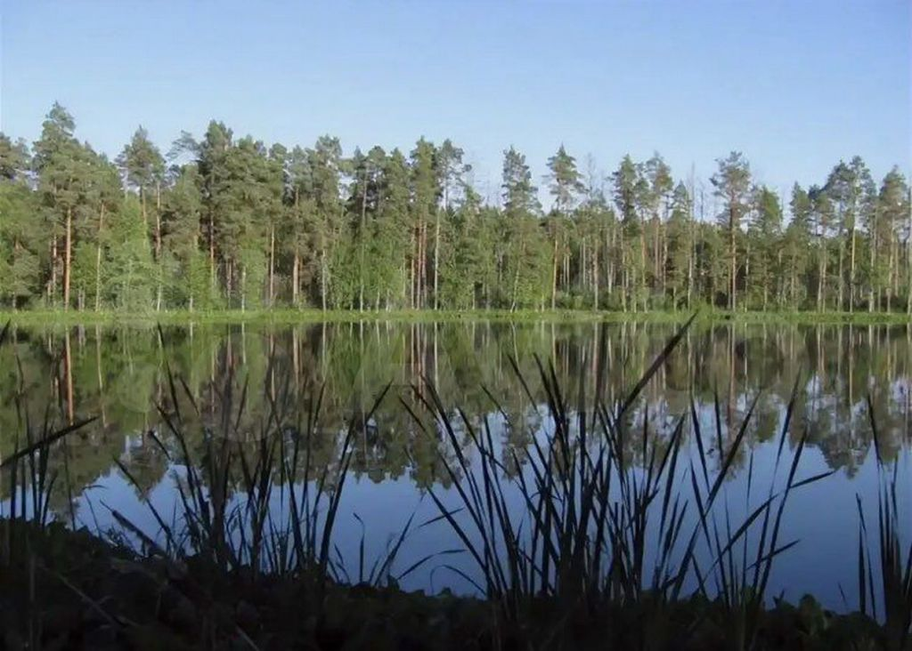 Продажа однокомнатной квартиры село Николо-Кропотки, цена 750000 рублей, 2021 год объявление №697426 на megabaz.ru