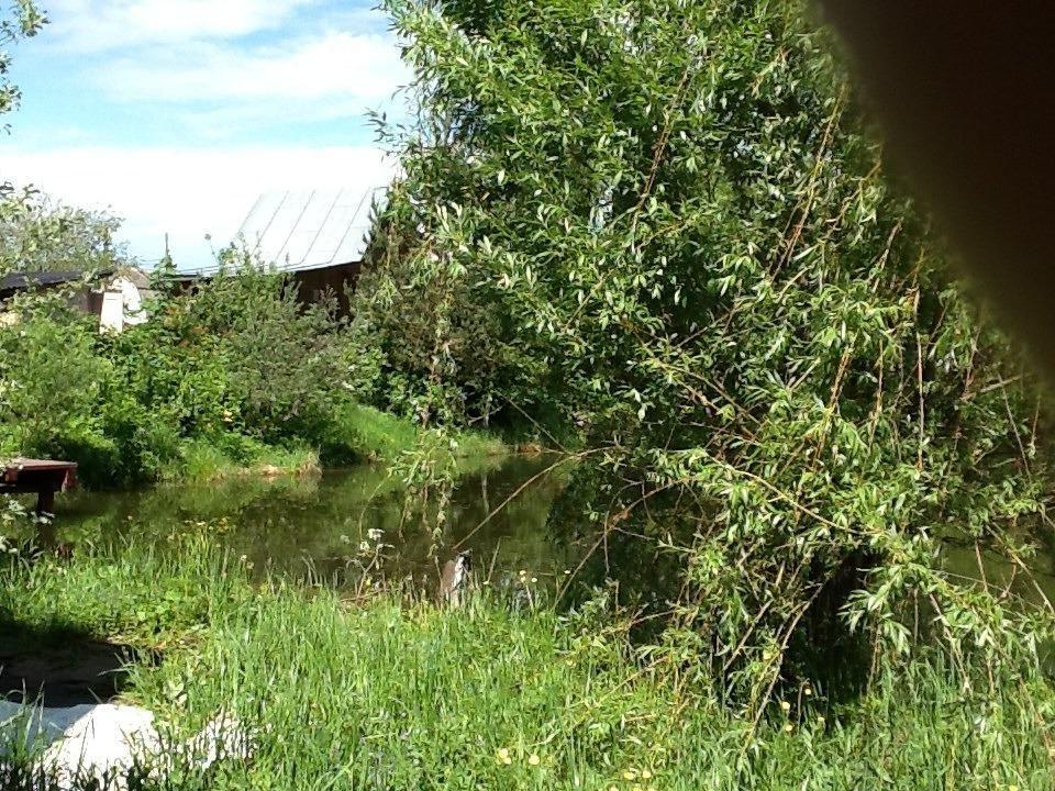 Продажа дома деревня Петелино, цена 4500000 рублей, 2020 год объявление №441611 на megabaz.ru