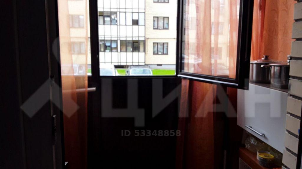 Аренда однокомнатной квартиры деревня Исаково, Рябиновая улица 13, цена 20000 рублей, 2021 год объявление №1082047 на megabaz.ru